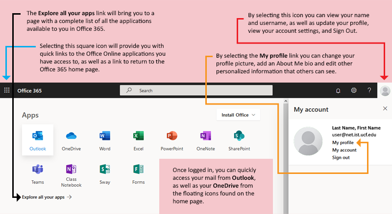 install office 365 for users